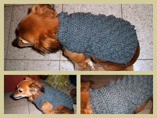 Free crochet patterns dog sweaters | Shop free crochet patterns