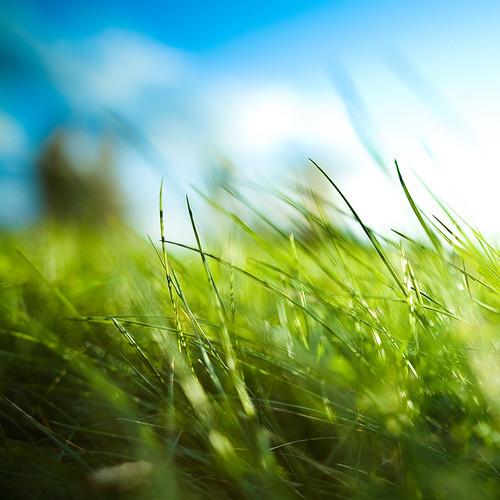 15-summerness_by_BenoitPaille