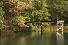 Hickory Ridge Pond