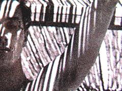 Mario Soldati, La confessione, Mondadori (Oscar Narrativa 1991) 2009; Art Director: Giacomo Callo, Graphic Designer: Susanna Tosatti; alla copertina: © Herbert List / Magnum / Contrasto (part.), 4