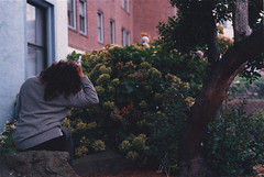 (CHELSEY / R / SCHEFFE) Tags: flowers film girl crane hydrangea canonae1 bushes neckpain