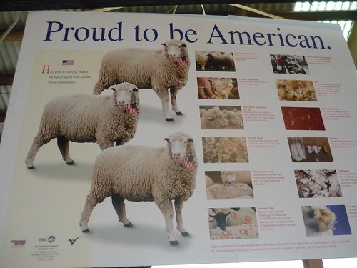 NY Sheep and Wool Festival