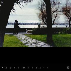 la passeggiata (paolo.benetti) Tags: parco nikon italia mare liguria f80 lungomare negativo imperia dianomarina passeggiata pellicola riproduzione