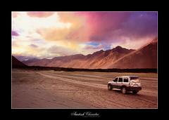 Driving into the Sunset (Amitesh Chandra) Tags: sunset india october september kashmir 2009 sanddunes ladakh snowcappedmountain krishlikesit amiteshchandra dewprismphotography humbledbythehimalayas