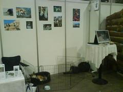 NLK på Dogs4All