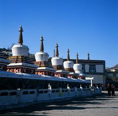 (((((JP))))) Tags: 120 6x6 tlr rolleiflex zeiss fuji tibet planar 西藏 80mm 正片 rvp50 28e 塔爾寺 中判 麗來