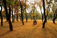 Autumn in Islamabad