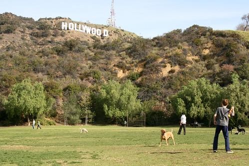 Dog Parks In California