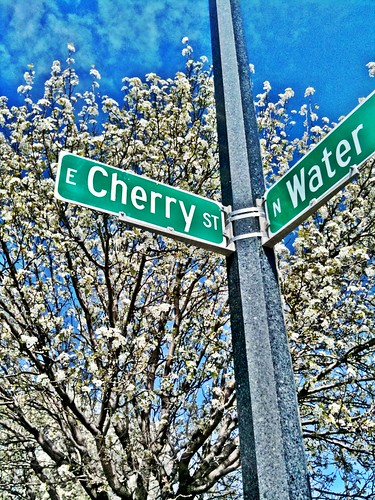 Cherry and Water
