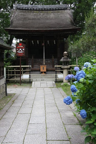 あじさいの神社 / Shinto shrine of the hydrangea
