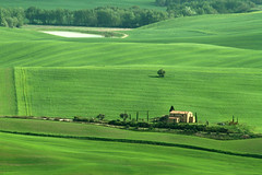 IMG_3349 (mauro muscas) Tags: erba paesaggio valorcia cretesenesi