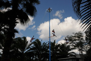 Swinging Mayan Dancers