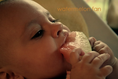 watermelon fan