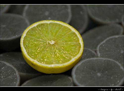Lemony Lime