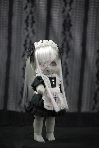 IMGP0258