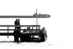 To view life in Black&White (Kirsten M Lentoft) Tags: sea bw water denmark pier onwhite nyborg greatbelt infinestyle funun halskov kirstenmlentoft storebæltsbroerne