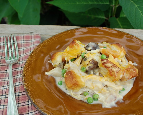 Biscuit Topped Chicken Stew CU1