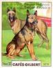 gilbert chiens007