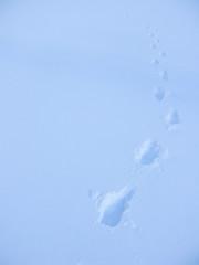 IMG_1471 (Luigi Tangana) Tags: nieve nuria 2008 vall