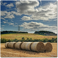 Hay ([c-h-i]) Tags: autumn trees sky green electric clouds nikon pylon cables chi rolls hay bales polariser 28200mm tranent f3556d vertorama