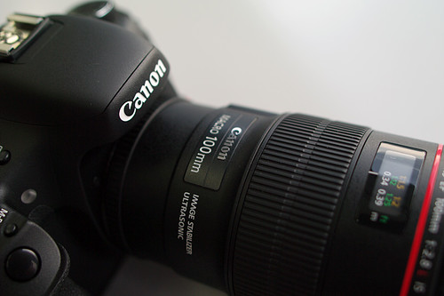 Canon-7D-11 macro100mm