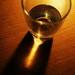 Fresh Glass of Water