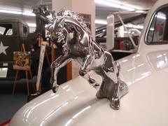 horse hood ornament