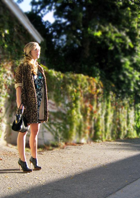 leapard-pattern-on-pattern-6