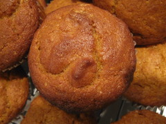 Our new favorite muffin... pumpkin muffin!