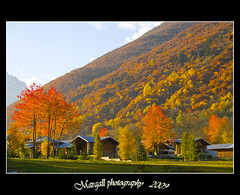 autunno - autumn in Entracque - Cuneo - Italy (Margall photography) Tags: autumn italy house mountain tree colors leaves alberi composition canon photography italia case explore piemonte marco 1855 lovely cuneo autunno montagna efs 30d galletto margall entracque bellitalia theoriginalgoldseal