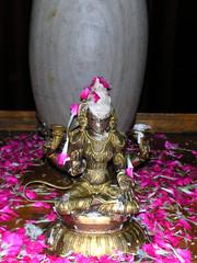 Home ShivaRatri    DSCN0340