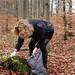 Tina collecting moss