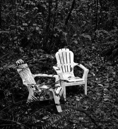 two chairs in a wood