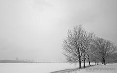 Frozen Charles (.:Brian Smith:.) Tags: bridge winter blackandwhite bw snow boston frozen massachusetts charlesriver newyearseve avenue 2009 bostonist
