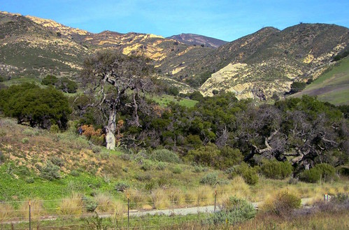 Highway 101 Near El Capitan