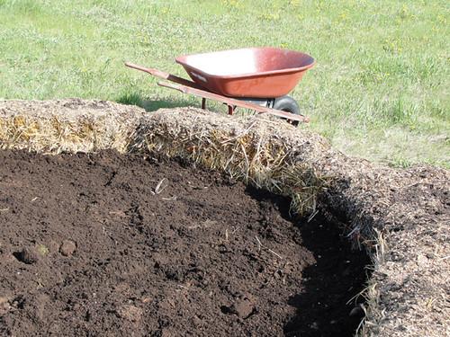 Straw bale garden 2