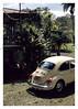 17_02_05_160p (2) (Quito 239) Tags: volkswagen 1971volkswagen 1971volkswagensuperbeetle superbeetleconvertible vw bug vocho escarabajo puertorico haciendaigualdad volky