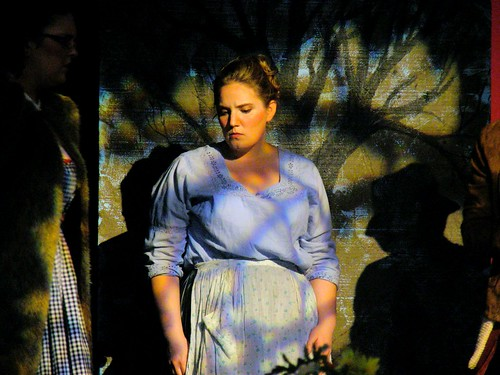 Lauren Green as Cinderella in Davenport Theatricals production of Into the Woods