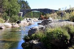 Le Pont du Tarn sur le Mont Lozère près du village de l'Hôpital (Cévennes)