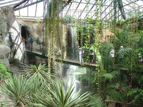 Le Rainforest du zoo de Buenos Aires.