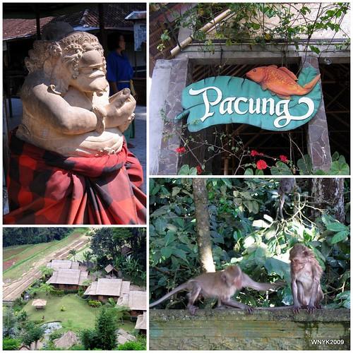 Bali20097
