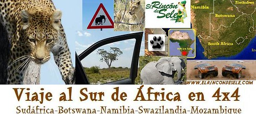 Banner Sur de Africa.