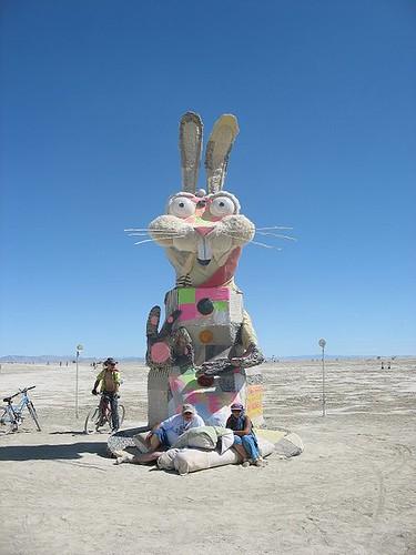 karma bunny