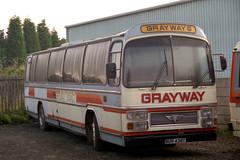 Bertie Bus