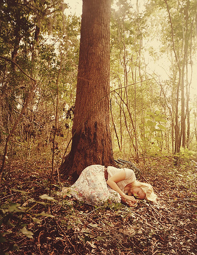 asleep in the woods