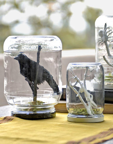 terrariums-diy-1009-de