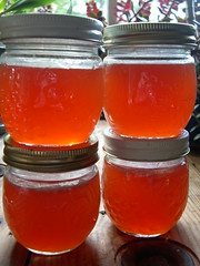 rosehip jelly