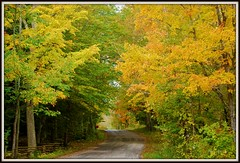 Door County Fall Color (DMoutray - Denny Moutray Photography) Tags: fall nature wisconsin doorcounty naturesfinest gillsrock mywinners worldbest theperfectphotographer worldwidelandscapes panoramafotogrfico dmoutray
