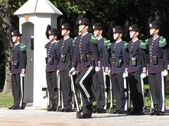 The Norwegian Royal Guard (Hazboy) Tags: oslo norway real penguin norge europa europe royal norwegen noruega garde regal norvegia royalpalace slottet noorwegen slott hazboy hazboy1 hansmajestetkongensgarde detkongeligeslottet lanorvge