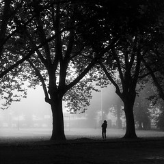 The Mist of Time (Gilderic Photography) Tags: belgium belgique belgie liege grivegnee peville parc park fog mist shadow ombre light black white dark silhouette people woman femme tree arbre car atmosphere city ville square 500x500 bw blackandwhite noiretblanc panasonic lumix dmclx3 lx3 raw lightroom bestcapturesaoi elitegalleryaoi europe mystery morning waiting trunk big small street playground autumn fall automne cinematic cinema story mood